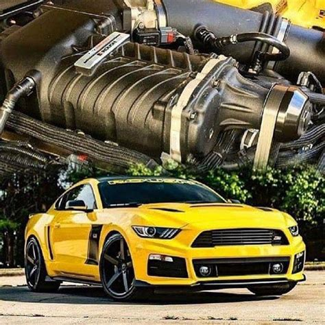 Rausch Ford Mustang by Pin By Ted Potoniec On Mustangs Cars Motor Car Cars