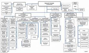New York City Government Organizational Chart Nalnol
