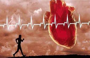 Image result for ضربان قلب