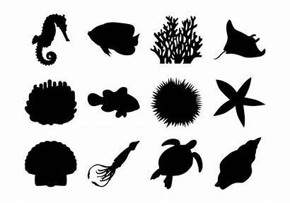 Sea Vector Silhouettes Clipart Silhouette Under Coral