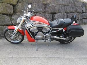 V Rod Occasion : harley davidson vrscr 1130 v rod street rod manu motos courchavon occasion ~ Medecine-chirurgie-esthetiques.com Avis de Voitures