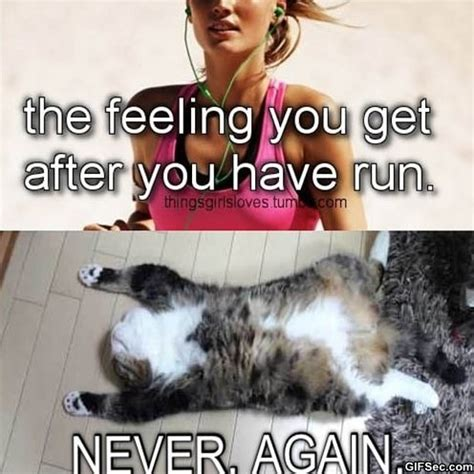 Running Memes - running meme pictures and quotes quotesgram