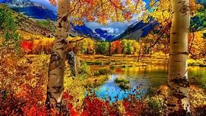 fall, season, wallpaper, , 53, , images