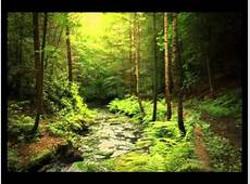 The beauty of nature a slideshow YouTube