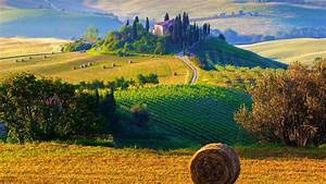 Farmers, U0026, 39, Fields, In, Italy, Wallpapers, And, Images