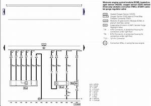 2004 Vw Passat 1 8t O2 Sensor Wiring Diagram