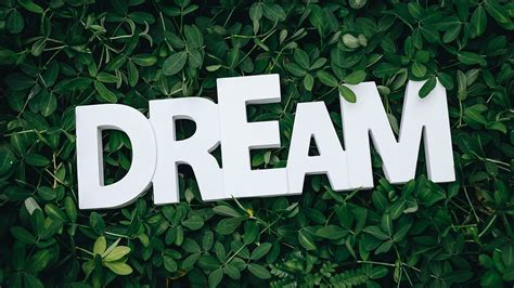 green leaves  dream text hd green wallpapers hd