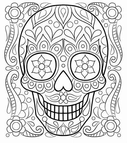 Colorear Calaveras Muertos Dia Catrinas Imagenes