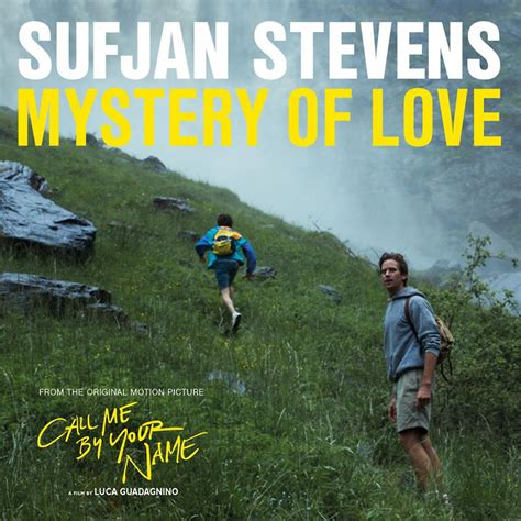 Sufjan Stevens | Music fanart | fanart.tv