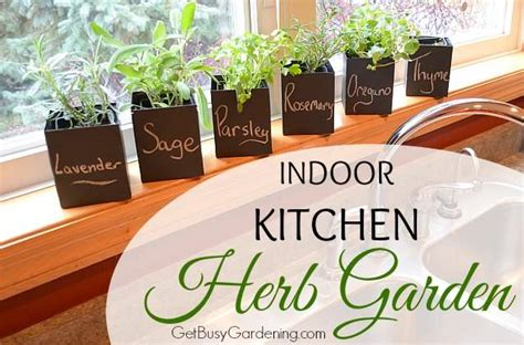Kitchen In Your Garden by Indoor Kitchen Herb Garden Get Busy Gardening