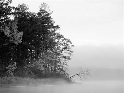 Nature Foggy Lake Black And White, Picture Nr 33621