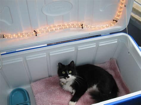 diy cat house diy outdoor cat house petdiys