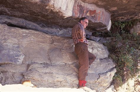 cracking  code  san rock art  south africa