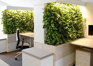 Pflanzenwand Selber Bauen : gr ne wand raffinierter blickfang f r die wohnung ~ Sanjose-hotels-ca.com Haus und Dekorationen