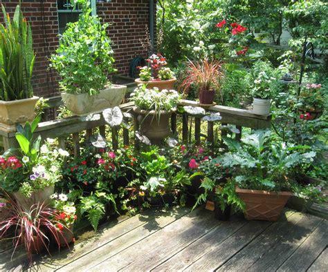 Randuwa The Madness, No The Joy Of Container Gardening