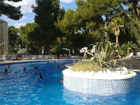 Best Mediterraneo Hotel Hotel Best Mediterraneo Updated 2019 Prices Reviews