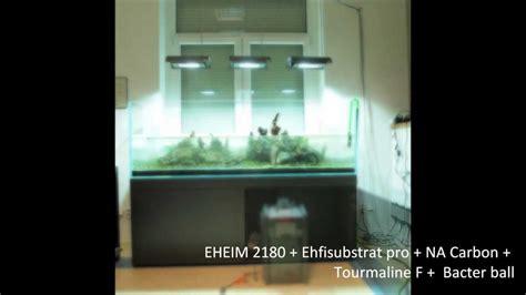 cm  nature aquarium setup youtube