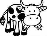 Cow Coloring Grass Animals Funny Eating Printable Outline Farm Animal Cows Cartoon Sheet Sheets Adult Games Zoo Categories Valentines Coloringgames sketch template