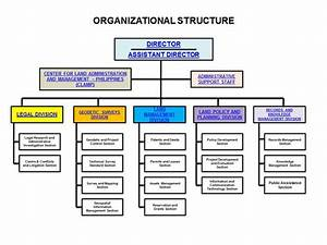 Organizational Structure Paper Editing Services