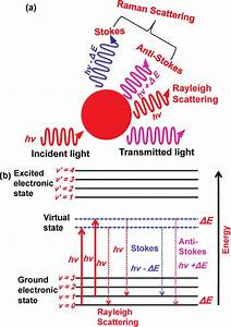 Interactions Between Photons And Molecules   A  Schematic