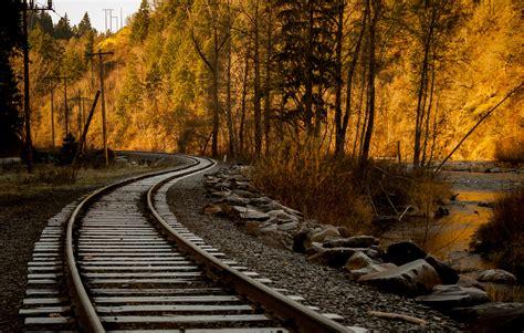 train rail   trees hd wallpaper wallpaper flare