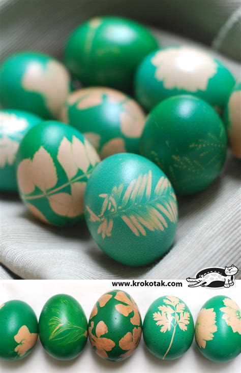 Easter Egg Coloring Ideas by Krokotak Tradition In Green Egg Dyeing With Grass And