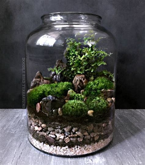 17 Best ideas about Large Glass Jars on Pinterest   Glass