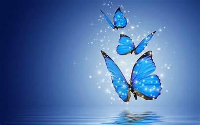 Butterfly Computer Butterflies Desktop Wallpapers Bing Wallpapertag