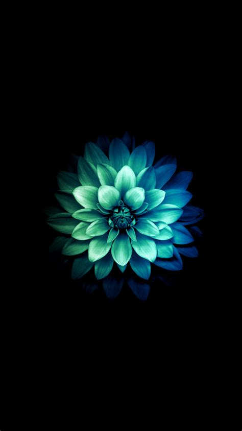 flower iphone background abstract green blue flower iphone 6 wallpaper 750x1334