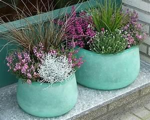 Hopfen Im Kübel Pflanzen : ponad 25 najlepszych pomys w na pintere cie na temat herbstbepflanzung k rbis pflanzen ~ Markanthonyermac.com Haus und Dekorationen
