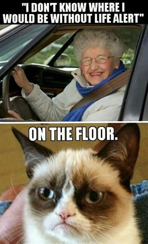 Grumpy Old Lady Meme - quotes about old people from driving quotesgram