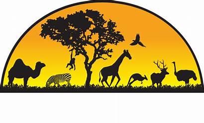 Animal Giraffe Adventure Park April Clipart Sloth