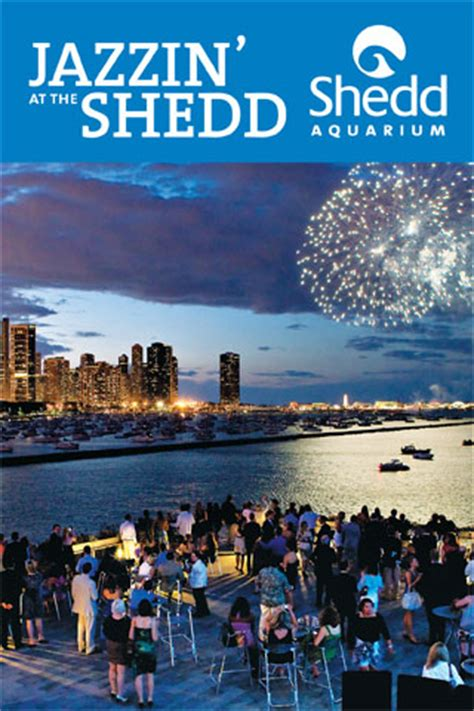 jazzin at the shedd chicago abounds this summer when jazzin at the shedd makes a