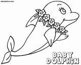 Dolphin Coloring Dolphins Bonanza Animal sketch template