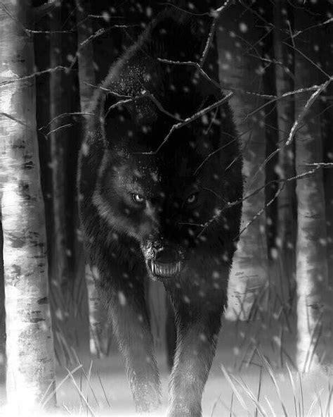 black wolf black wolf scary wolf wolf tattoos