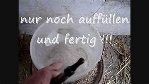 Hühnertränke Selber Bauen : einfacher futterspender easy chicken feeder youtube ~ A.2002-acura-tl-radio.info Haus und Dekorationen