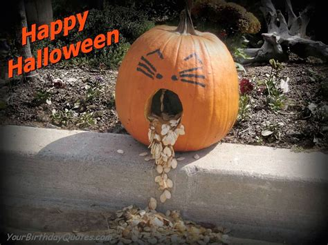 hd wallpapers blog halloween wishes funny