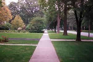 Road verge - Wikipedia