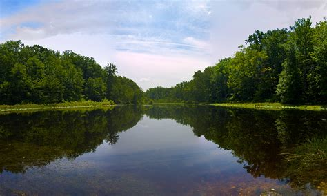 file cedarville state forest pond in waldorf maryland jpg