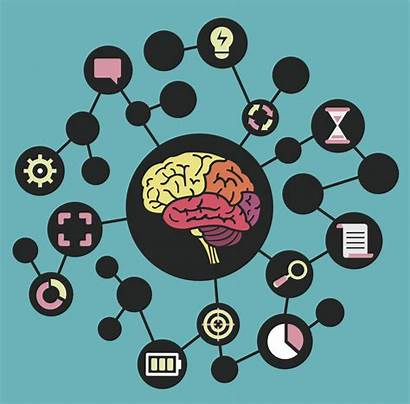 Mind Map Mapping Vector Brain Examples Brainstorming