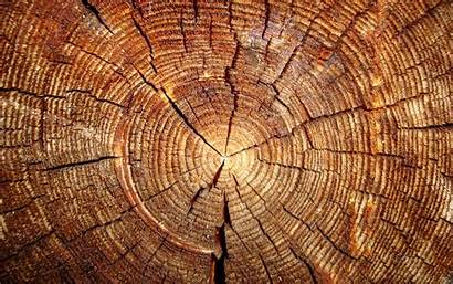 Wood Wallpapers Pixelstalk