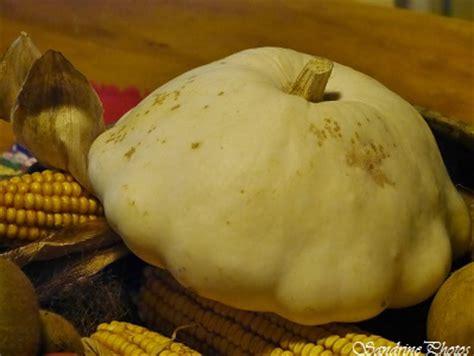 cuisiner patisson blanc pâtisson blanc