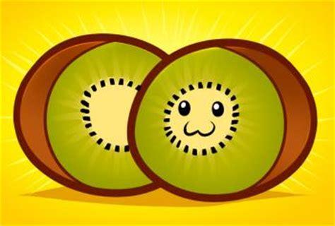 draw   draw kiwi kiwi fruit hellokidscom