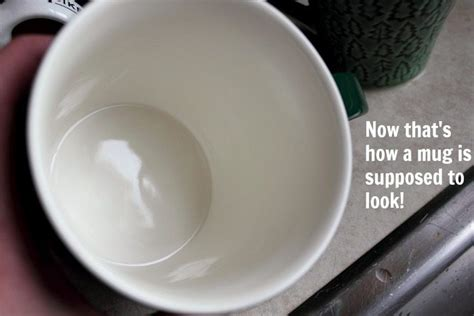 How To Remove Coffee And Tea Stains From Mugs Naturally! Certified Carpet Care Sherwood Park Professional Cleaning Richmond Bc How To Get Nail Polish Remover Out Of The Boat Installation Guides Stanley Steemer Solution Sag Award Red 2018 Gateway Carpets Manalapan Nj Dave S Beverly