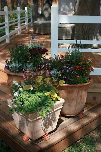Container Gardening Perennials Pretty Enjoyable Probably Most