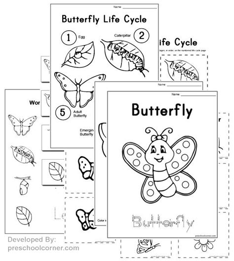 butterfly life cycle for preschool free preschool butterfly printables and crafts livro de 818