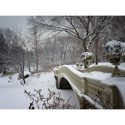 Central Park The Most Famous in New York United