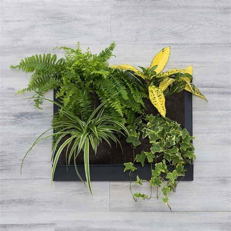 verde verticale interni verde verticale 4 tasche in feltro floravip lindoshop