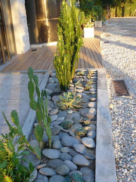 jardines de cactus  suculentas jardin de cactus  suculentas