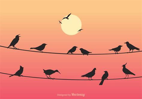 birds  wires vector illustration